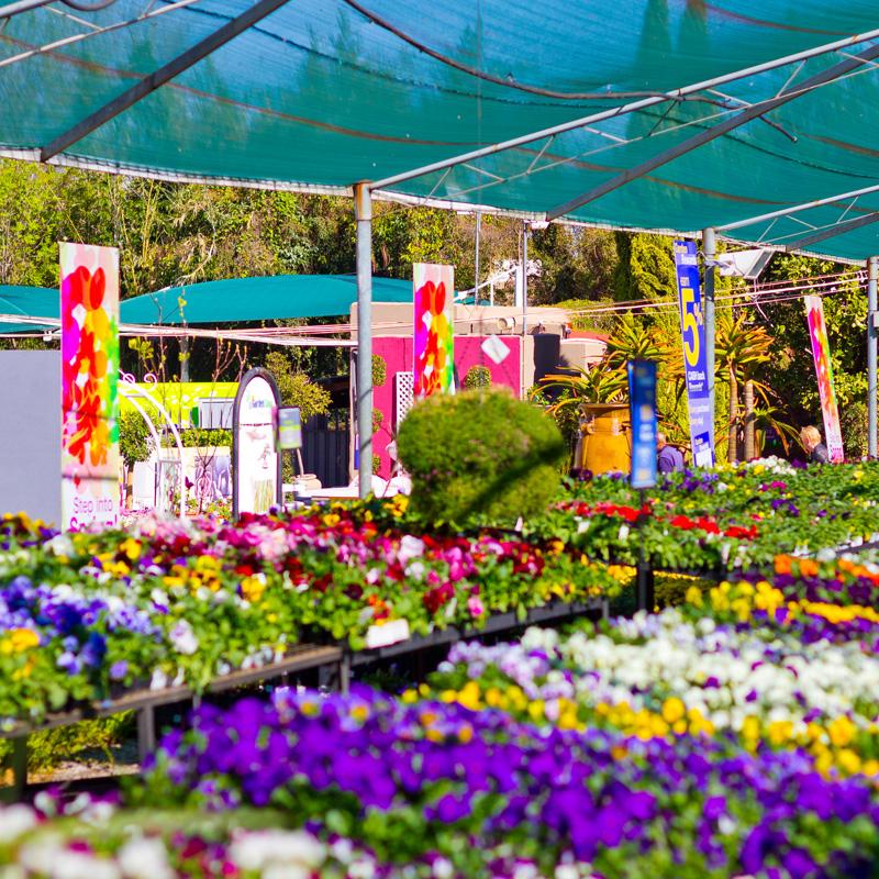 GardenShop_Parktown_1 GardenShop Parktown North
