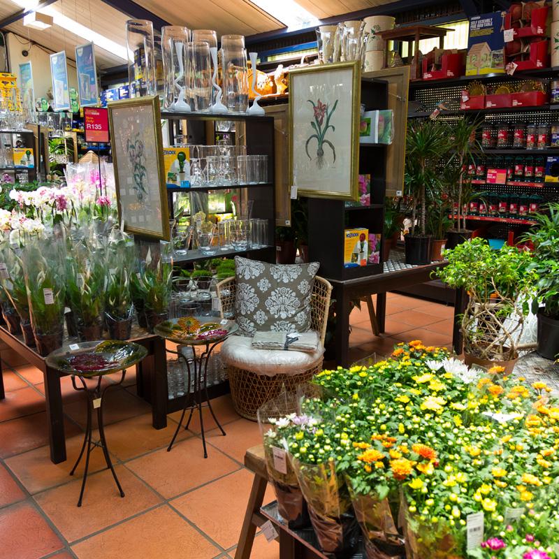 GardenShop_Parktown_2 GardenShop Parktown North