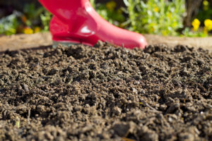 How-to-prepare-soil-for-planting-300x200 How to Videos