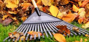june_header-630x3001-300x143 Gardening Month by Month