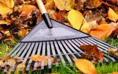 june_header-630x3001-400x250 Gardening Month by Month