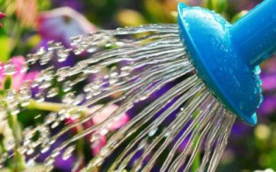 oct_header-630x300-400x250 Gardening Month by Month