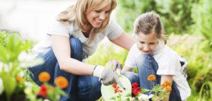 september_header-630x300-300x143 Gardening Month by Month