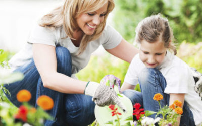 september_header-630x300-400x250 Gardening Month by Month