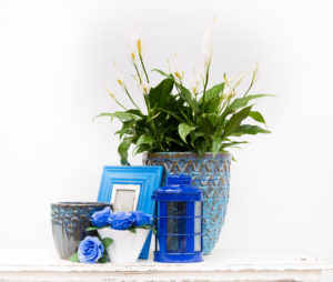 traditional-blue-and-white