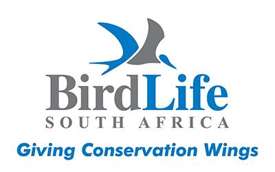 bird_life BIRDING