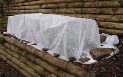Getting-Your-Garden-Ready-For-Winter-400x250 Garden Guru Tips and Tricks