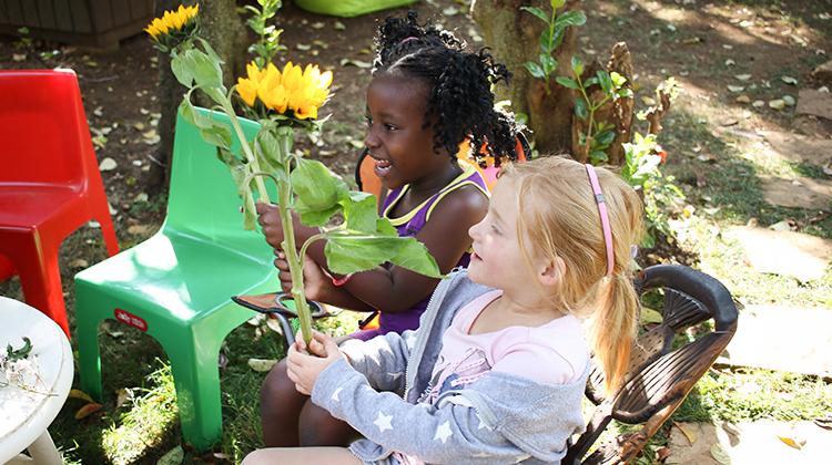 Festive Season Gardening Fun
