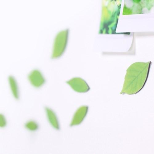 Leaf Magnet Birch Green3