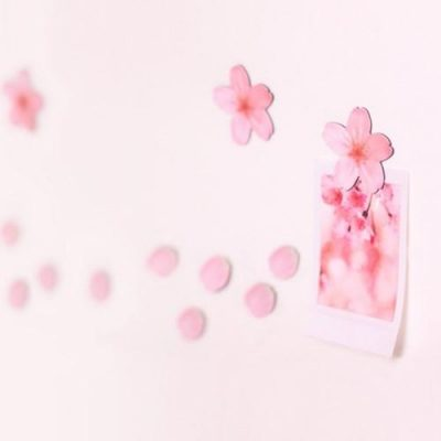 Leaf-Magnet-Cherry-Blossom-Pink2-400x400 Gifting Ideas