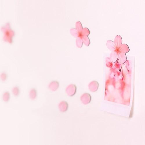 Leaf Magnet Cherry Blossom Pink2