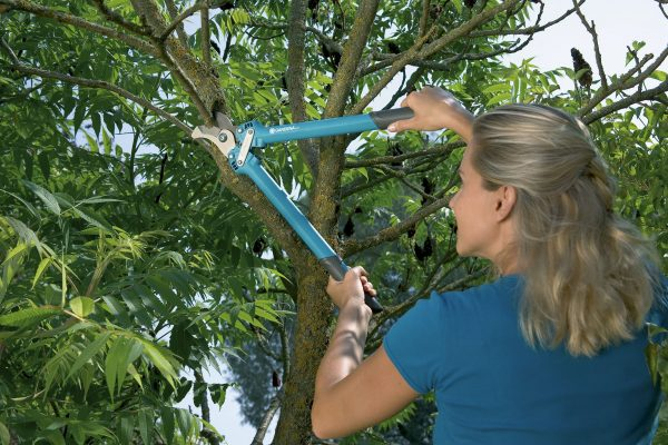 8770-20 (Gardena Comfort Bypass Pruning Lopper 500 BL)