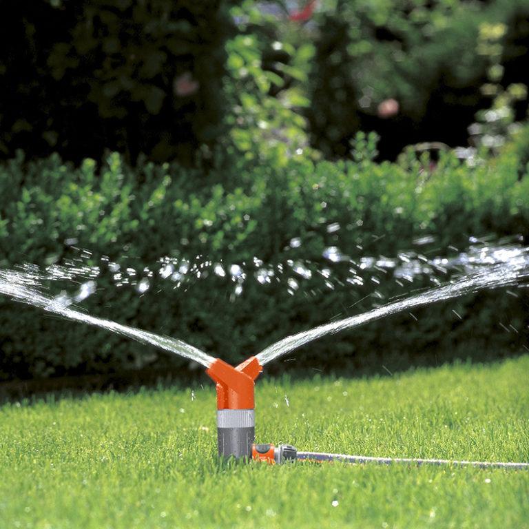 PIc Sprinkler rose foxtrot