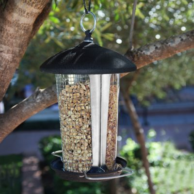 Dual Seed and Peanut Feeder