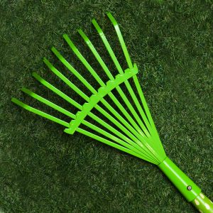 Kiddies Fan Rake