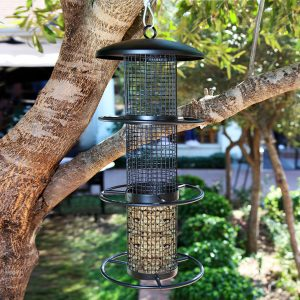 FI Metal Peanut Feeder