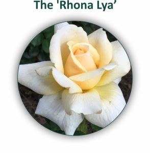 Rhona-Lya-Rose-294x300 GardenShop – A History of a Love for Flowers