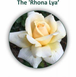Rhona Lya Rose