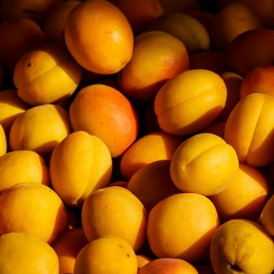agriculture-apricot-color-209416-400x400 Fruit Trees