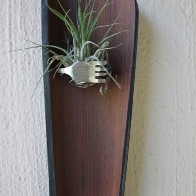 Airplant Holder IMG_3879