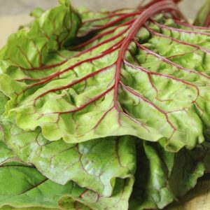 Swiss Chard Spinnach 17cm
