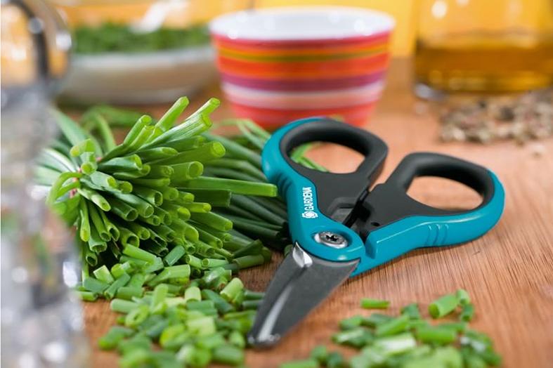 Garden Tools | GardenShop