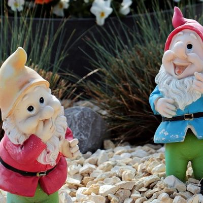Assorted Garden Gnomes