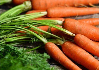Carrots-400x284 Your OctSOWber Garden!