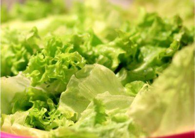 Lettuce-400x284 Your OctSOWber Garden!