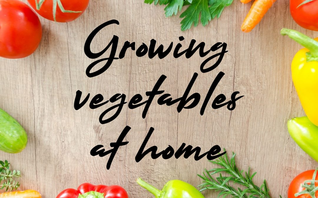 Growing Vegetables @ Home