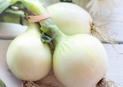 Onions-400x284 Your OctSOWber Garden!