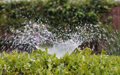 irrigation-2402568_1920-400x250 News