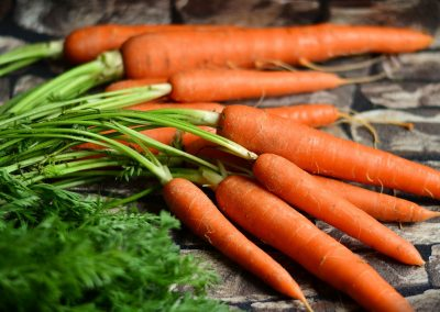 carrots-2387394_1920-400x284 What to do in your garden in February