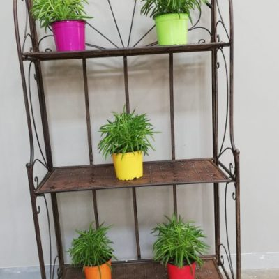 Shelf Wall 3 Tier