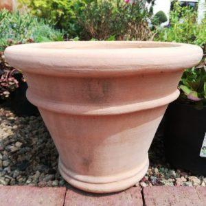 F1 TCP 150121 Large pot plant
