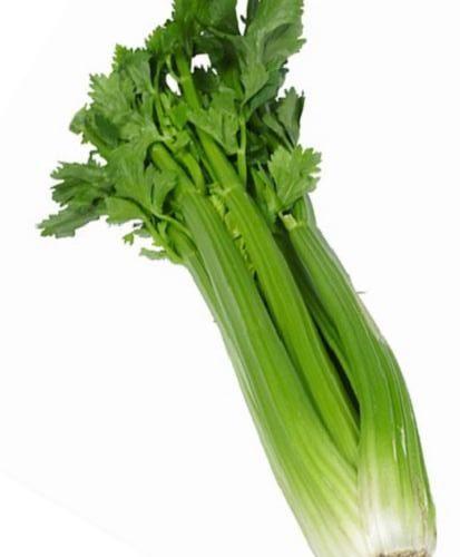 celery_