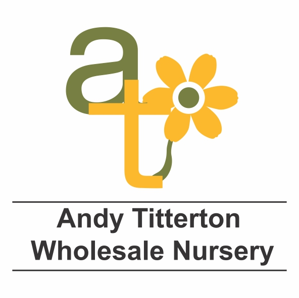 ANDIY-TIT WIN a trolley competition!