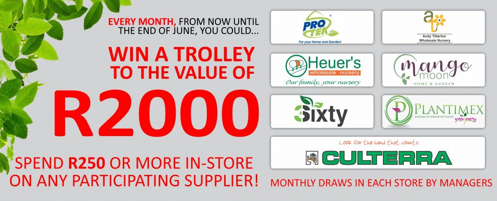 facebook-banner-1-1024x415 WIN a trolley competition!
