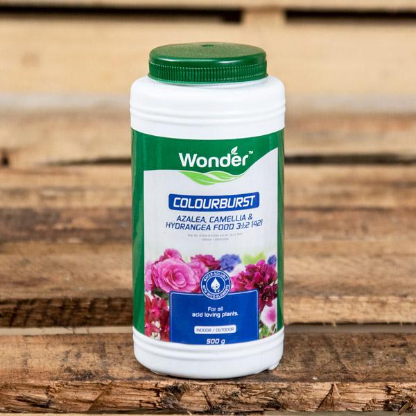 31473000 - Wonder - Colourburst Azalea & Hydrangea Food 500g