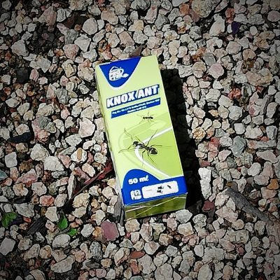 INSECTICIDE 50ml
