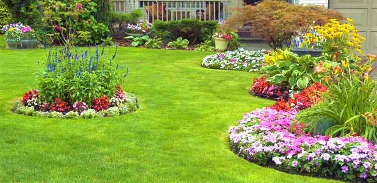 Gardening Challenges in 2020
