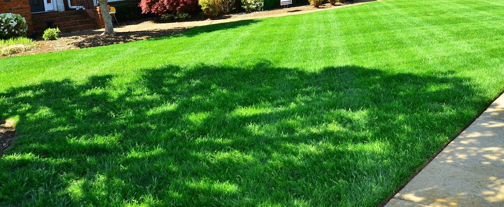 Lawns – Spring Preparation & Care