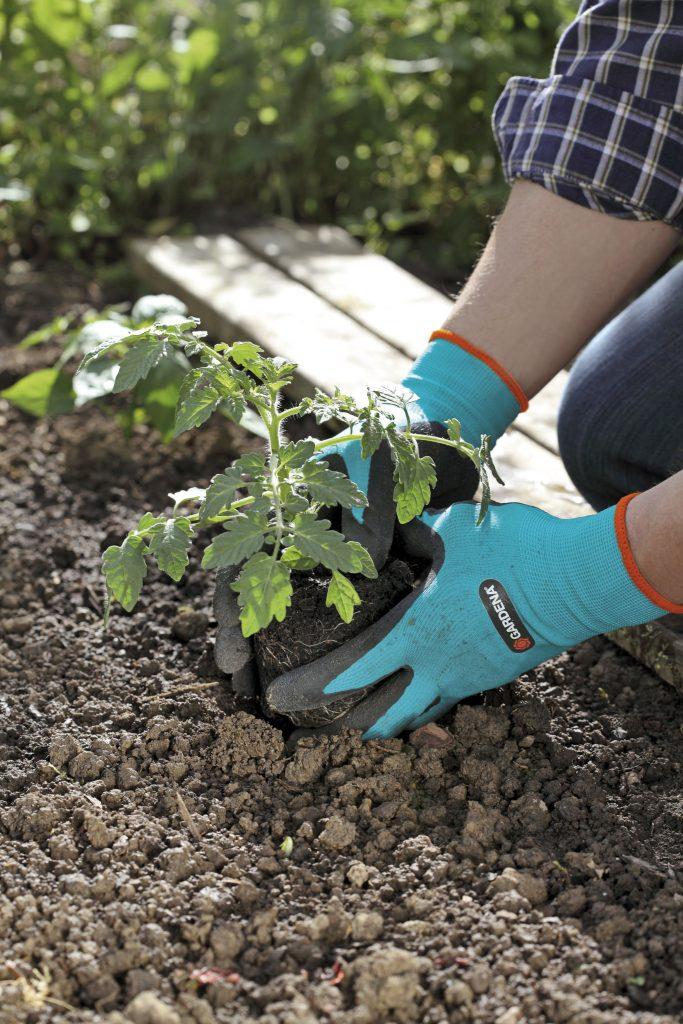 205-20-Gardena-Gloves-Planting