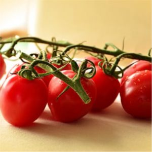 Cherry Tomato assorted 17cm