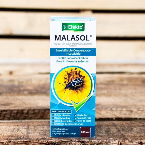 10003732 - Efekto - Malasol 200ml