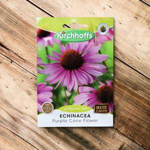 Kirchhoffs – Echinacea Purple Cone flower