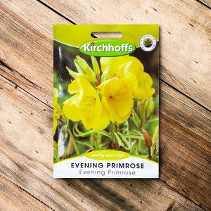 Kirchhoffs – Evening Primrose