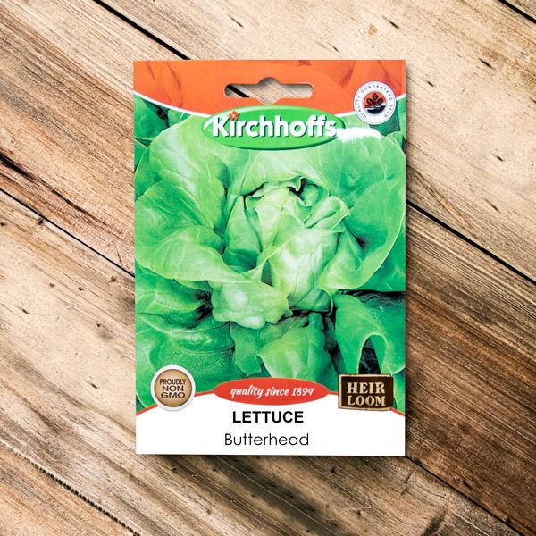 70063044 - Kirchhoffs - Lettuce Butterhead