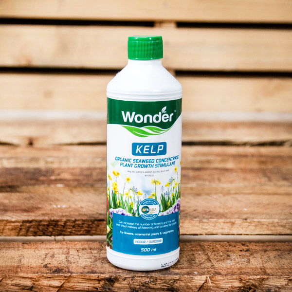 30451000 - Wonder - Kelp 500ml