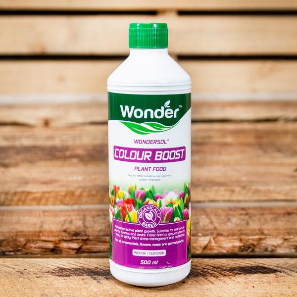 70013384 - Wonder - Colour Boost 500ml